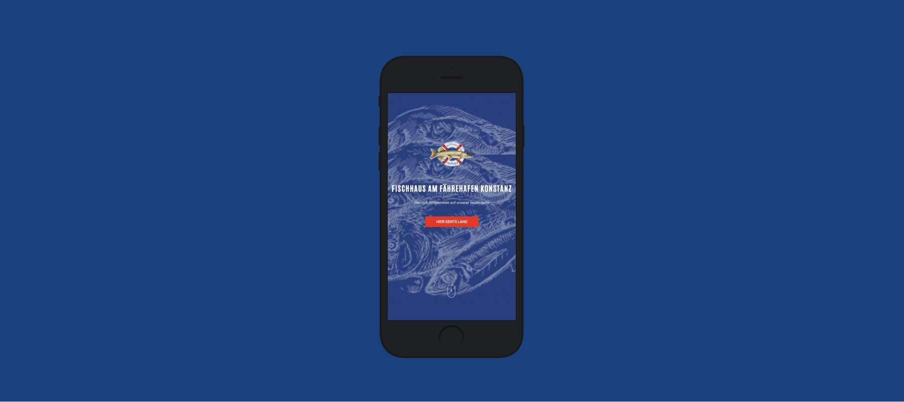 webdesign webentwicklung salz und zucker salz&zucker FISCHERHAUS
